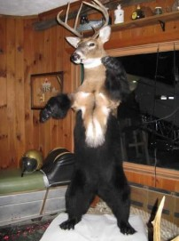 Deer/Bear
