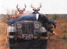 deer revenge