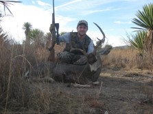First Mule Deer