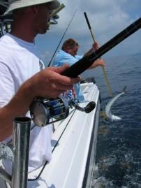 Fishing the Gulf