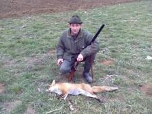Fox down..