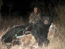 Giant Black Bear w/ Bow