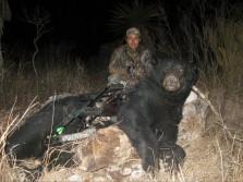 Giant Black Bear w/ Bow
