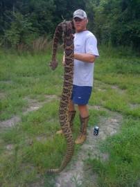 Biggest Rattlesnake