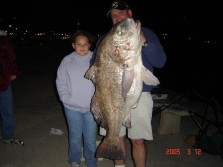 Mississippi State Record Black Drum