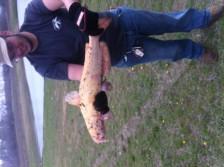 My albino catfish