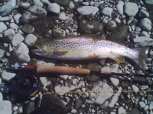 My Favorite way to fish