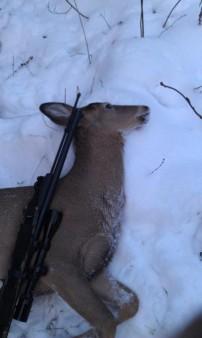 Northern Michigan Hunt