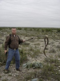 Snagging Rattlesnakes