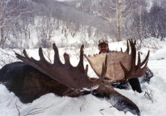 Record Russian Moose