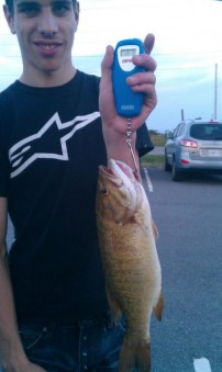 Smallmouth Bass out of the lake today