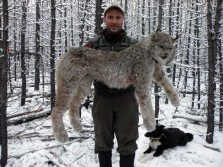 World Record Lynx