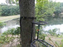 Monkey Tree Stand Pulley