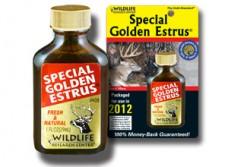 Special Golden Estrus