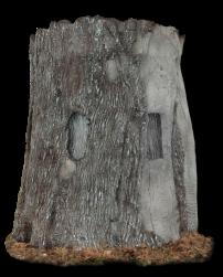 TreeBlind