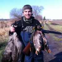 MRORD Duckhounds waterfowl
